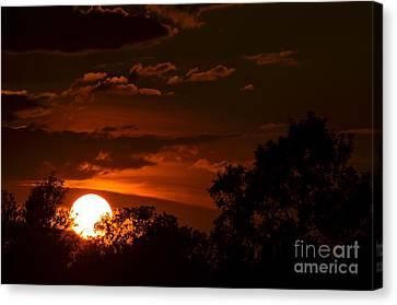 Sun Cradle... Canvas Print by Dan Hefle