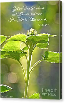 Sun Drenched Sunflower With Bible Verse Canvas Print by Debbie Portwood