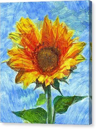 Sun Flowering 2 Canvas Print by Yury Malkov
