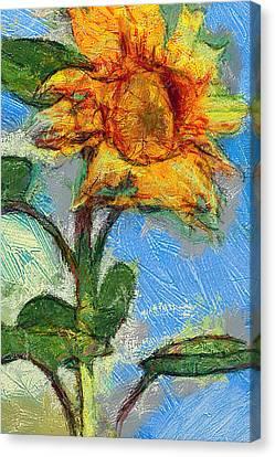 Sun Flowering 5 Canvas Print by Yury Malkov