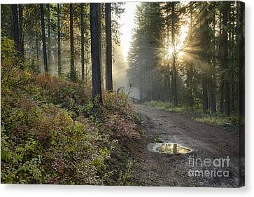 Huckleberry Road Canvas Print by Idaho Scenic Images Linda Lantzy