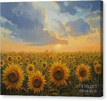 Rural Scenery Canvas Print - Sun Harmony by Kiril Stanchev