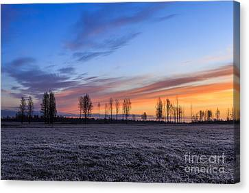 5dmk3 Canvas Print - Sun Is Rising And Painting  by Mario Mesi