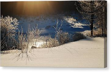 Sun On Snow Canvas Print by Mim White