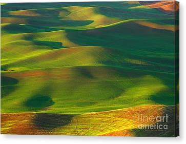 Sun Painted Hills Canvas Print