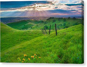Sun Rays And Green Hillside Canvas Print by Marc Crumpler