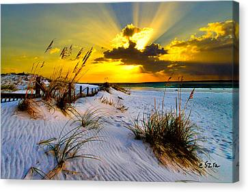 Sun Rays Golden Landscape Canvas Print by Eszra Tanner