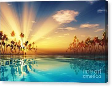 Sun Rays Inside Coconut Palms Canvas Print by Aleksey Tugolukov