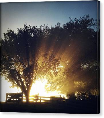 Sun Rays Canvas Print by Les Cunliffe