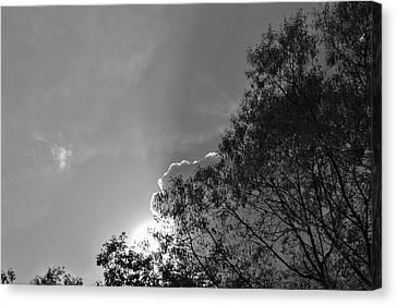 Sun Rays Canvas Print by Thomas  MacPherson Jr