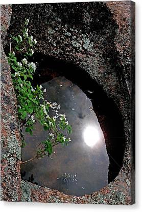 Sun Reflection Canvas Print