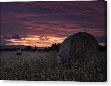 Canvas Print featuring the photograph Sunrise Over The Harvest by Stewart Scott
