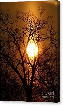Sun Rise Sun Pillar Silhouette Canvas Print by Kenny Glotfelty