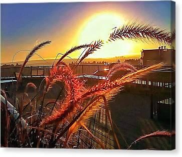 Sun Rises Wheatley Canvas Print by Eddie G