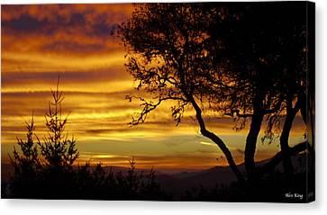 Sun Rising  Canvas Print