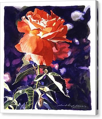 Sun Rose Canvas Print