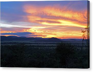 Sun Setting Over Serengeti Canvas Print by Tony Murtagh