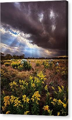 Sun Showers Canvas Print by Phil Koch