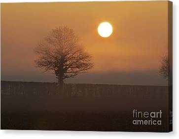 Canvas Print featuring the photograph Sun Up by Gary Bridger