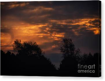 Sun Up Canvas Print by Thomas Woolworth