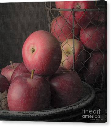 Sun Warmed Apples Still Life Square Canvas Print by Edward Fielding