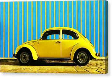 Sun Yellow Bug Canvas Print by Laura Fasulo