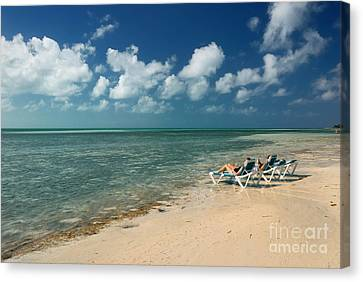 Sunbathers On The Beach Canvas Print by Amy Cicconi
