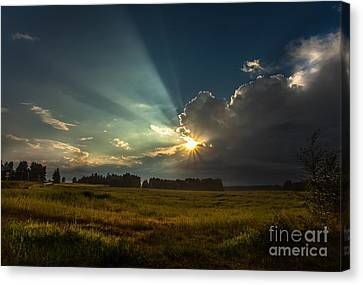 Canvas Print featuring the photograph Sunbeam by Rose-Maries Pictures