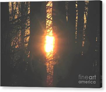 Canvas Print featuring the photograph Sunblaze-2 by Melissa Stoudt