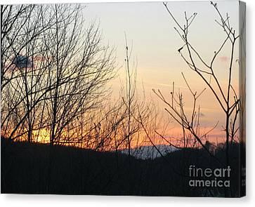 Sunblaze-5 Canvas Print