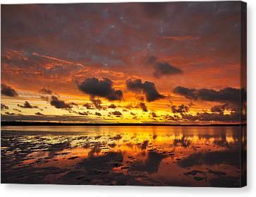 Sunburnt Sky Canvas Print by Sally Nevin