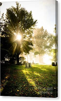 Sunburst Over Cemetery Canvas Print by Amy Cicconi