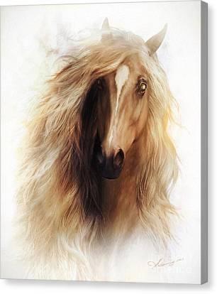 Sundance Horse Portrait Canvas Print by Shanina Conway