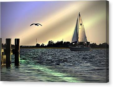 Sunday Afternoon Canvas Print by Allen Beilschmidt