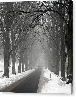 Sunday Afternoon Winter Canvas Print by Odd Jeppesen