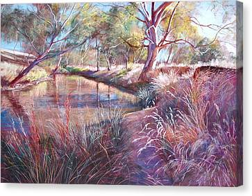 Sunday Creek At Dochery's Road Canvas Print by Lynda Robinson