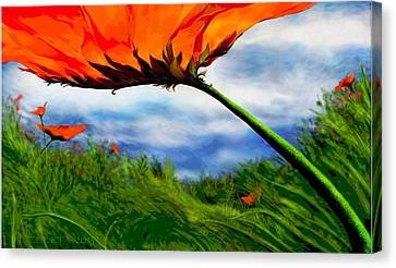 Sunday Kind Of Day Canvas Print