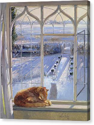 Sundial And Cat  Canvas Print by Timothy Easton