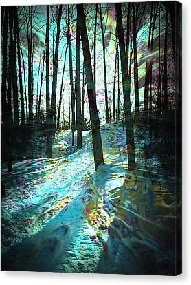 Sundog Reflections Canvas Print by Shirley Sirois