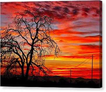 Sundown On Jeffcoat Canvas Print
