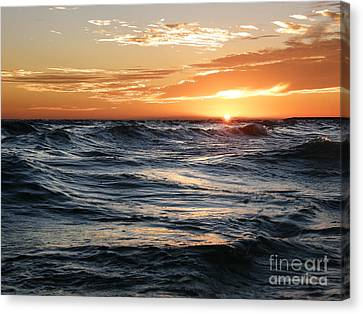 Canvas Print featuring the photograph Deep Calls To Deep by Shevon Johnson
