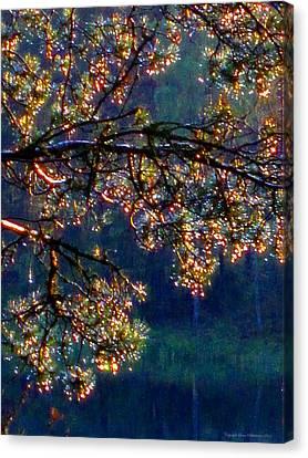 Sundrops Canvas Print by Leena Pekkalainen
