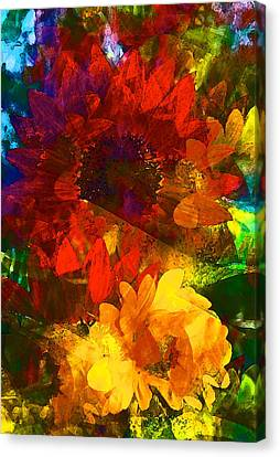 Sunflower 11 Canvas Print by Pamela Cooper
