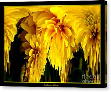 Sunflower Abstract 1 Canvas Print by Rose Santuci-Sofranko