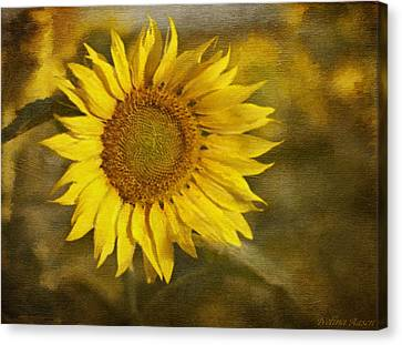 Sunflower And Sunshine  Canvas Print by Ivelina G
