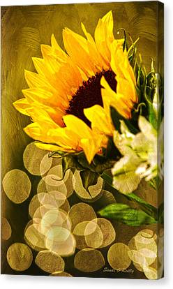 Sunflower And The Lights Canvas Print by Sandi OReilly