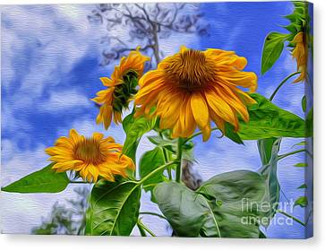 Sunflower Art Canvas Print by George Paris