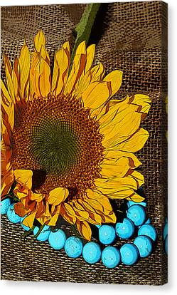 Sunflower Burlap And Turquoise Canvas Print by Phyllis Denton