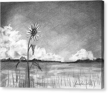 Sunflower Cloud Canvas Print