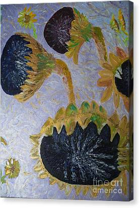Sunflower Cycle Of Life 3 Canvas Print by Vicky Tarcau